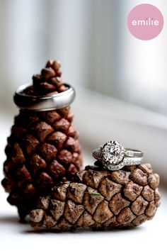 If the wedding is pine cone themed - photographer must get this shot!