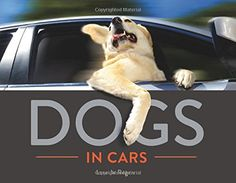 Ultimate list of coffee table books for dog lovers