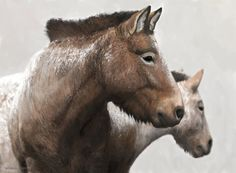 Ice Age horses by Tom Björklund on DeviantArt