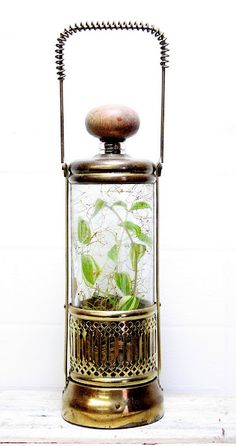 Music Box Music Jewelry, Mini Greenhouse, Old Music, Pretty Box, Altered Boxes, Trinket Boxes, Snow Globes, Cool Pictures, Glass Art