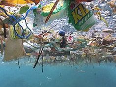 What is the Great Pacific Ocean Garbage Patch? What is the Great Pacific Ocean Garbage Patch? A swirling sea of plastic bags, bottles and other debris is growing in the North Pacific, and now another o Ocean Garbage Patch, Great Pacific Garbage Patch, Ocean Pollution, Plastic Pollution, Plastic In The Sea, Plastic Waste, Plastic Bags, Plastic Bottles, Nature