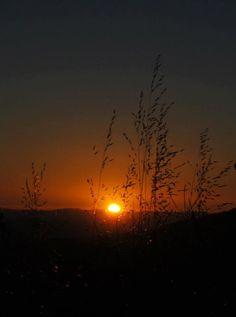Goodnight Sun Palomar Mountain AlizaGerritt©2012