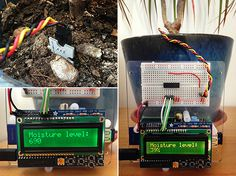 Build a Raspberry Pi Moisture Sensor to Monitor Your Plants