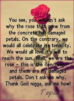 Tupac keep head up lyrics