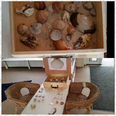 Exploring shells at Chadwell Preschool