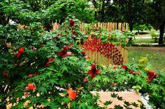 """La stanza giardino"" Garden Festival Chianciano Terme Origami, Festival, Stuffed Peppers, Vegetables, Plants, Stuffed Pepper, Paper Folding, Vegetable Recipes, Flora"