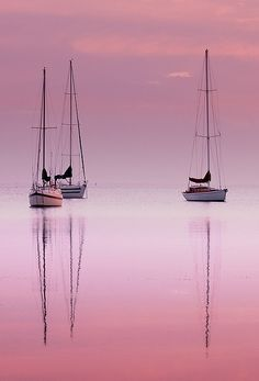 Pink Dawn | Interesting Pictures