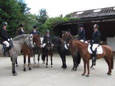 Newcastle and North Durham Pony Club, England. 2012.