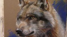 http://www.marjoleinkruijt.nl - Pastel painting of a wolf by artist Marjolein Kruijt. http://www.facebook.com/marjolein.kruijt Also available: book on animal...