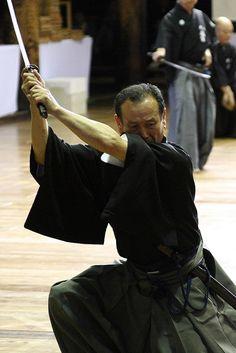 Muso Jikiden Eishin-ryu