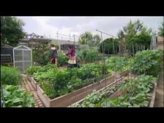 """Revolutionary Family Shows True Meaning of Self-Reliance » Think you can't grow much food in an urban area? Think again. One family's 4,000 square foot farm in Pasadena, California """"not only feeds a family but revolutionizes the idea of what can be done in a very unlikely place—the middle of a city."""""""