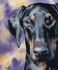 Doberman Pinscher Art Print by Watercolor Artist DJ Rogers Perro Doberman Pinscher, Doberman Puppies, Watercolor Artist, Watercolor Paper, Black And Tan Terrier, Dachshund Funny, Funny Puppies, Arte Pop, Dog Paintings