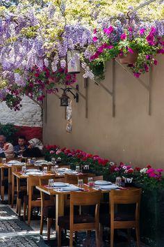 Wisteria, Beylerbeyi Restaurant, Istanbul, Turkey