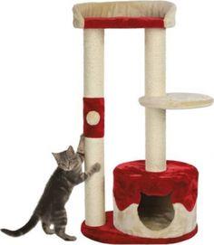 Gastos de envío gratis Árbol rascador para gato Pilar - Pago en 3 plazos con tarjeta -5€ de descuento en su primera compra Pets, Diy, Google, Kitty Cat Pictures, Diy Dog, Cat Trees, House For Cats, Cat Tree House, Pet Products