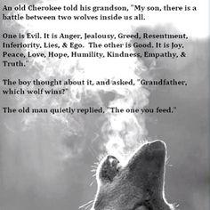 Which #wolf do you feed? #quote #saying #wise #wisdom