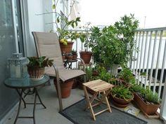 Plus de 1000 id es propos de balcons et petites terrasses sur pinterest balcons petits for Quelles plantes pour balcon