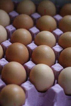 Organic free range eggs.