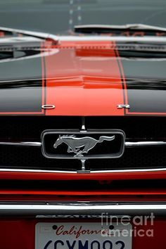 Photograph - 65 Mustang by Dean Ferreira Mustang 65, Mustang Girl, Mustang Fastback, Mustang Wallpaper, Iphone Wallpaper, Us Cars, Cars Usa, Classic Mustang, Automobile