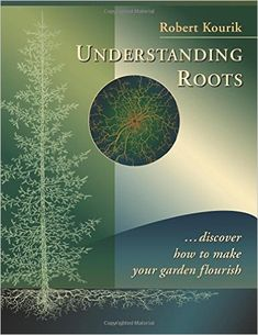 Image result for roots and soil talking to each other