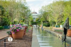 The Canal Garden During Kate and Mike's Wedding at Daniel Stowe Botanical Garden. Copyright Torrence Photography.