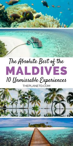 10 of The Best Things to do in MaldivesWhether visiting the Maldives as part of a dream honeymoon (hello, over water villa!), family vacation or destination wedding, don't miss these 10 things to do. Get off the resort and go snorkeling, scuba divin Maldives Honeymoon, Maldives Travel, Honeymoon Destinations, Maldives Wedding, Honeymoon Inspiration, Travel Inspiration, Island Life, Paradise Island, Water Villa