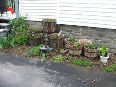 So beautiful  Herb garden in planters / http://www.everydaygardening.net/herb-garden-in-planters/