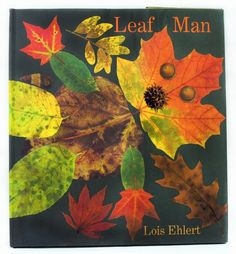 The Simplicity of Learning: Leaf Man