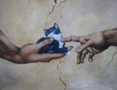 ★ The Creation of Kitty #awesome #cat #cute ★