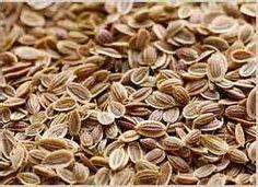 Yum Rush Inc. - Dill Seeds WS, $2.19 (http://www.yumrush.com/dill-seeds/wholesale)