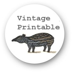 A plethora of vintage printables. Click on 'menu' then 'archive' and be prepared to be overwhelmed.