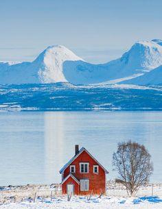 ~ Norway ~:
