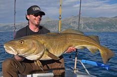 Großdorschangeln mit Gummifisch | Fishing big cod with soft plastic lures