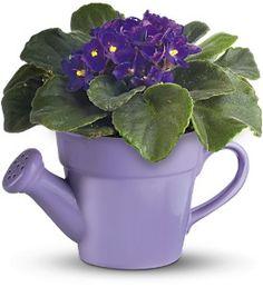 Garden Party Invitations, Centerpieces, Place Cards, Favors, Paper Goods, U0026  Games. Indoor Flowering PlantsPretty FlowersPurple ...