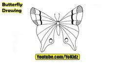 How to draw a BUTTERFLY for kids  Butterfly Drawing from YoKidz  #YoKidz #Drawing #PencilDrawing #Generaldrawing #Like4like #Likeforlike #Share4share #Shareforshare #Draw #Blackandwhite #Butterfly #DrawButterfly