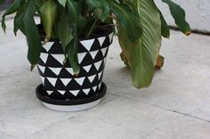 Colorful Pots - Not your typical pot ideas. Get creative ideas with all these options.