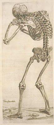 Free Printable Vintage Skeleton Images