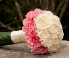 My 2 fav flower a rose of course for my name & a carnation my birth flower