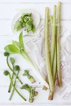 春の香りを味わう 、山菜の リゾット