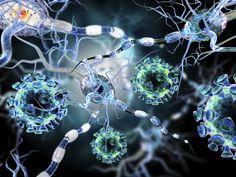 ¿Cuánto sabes sobre virus y bacterias?Estos microorganismos, invisibles al ojo humano, protagonizan muchas de las enfermedades que padecemos los humanos. ¿Lo sabes todo sobre estos agentes infecciosos?