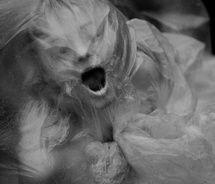 Women of Horror and Violence Horror Photography, Dark Photography, Inspiring Photography, Deep Books, Art Tumblr, Bizarre, Scream, Dark Art, Dark Side
