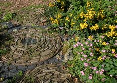 Unusual path detail and planting