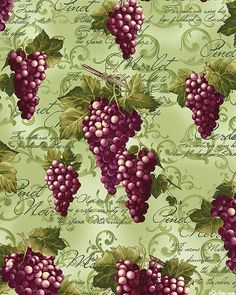 Wine Connoisseur - Ripe Red Grapes - Willow Green