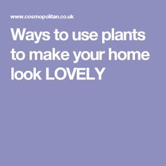 Ways to use plants to make your home look LOVELY