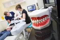 Your dentist may be ripping you off. Here's how to avoid that. - Vox