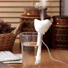 Buy 'Creative Living – Bird USB Humidifier' with Free International Shipping at YesStyle.com. Browse and shop for thousands of Asian fashion items from China and more!