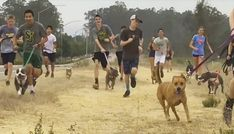 High school cross-country team takes shelter dogs for run: It's hard to tell who's having more fun: the abandoned shelter pups or the high school teens.