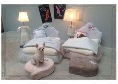 Fancy Dog Beds- Raised Dog Beds, Luxury Dog Bed, Designer Puppy Bed