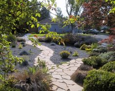 Oh how appealing!! Never have to mow!! To top it off all the plants are drought tolerant.
