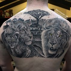 Black and grey realism lion pride back piece tattoo to represent my clients family, was a pleasure finally finishing this one! Father Son Tattoo, Tattoo For Son, Tattoos For Guys, Back Piece Tattoo Men, Back Tattoo, Lioness Tattoo Design, Lion Sleeve, Pride Tattoo, Lion Family