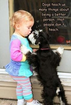 Dogs teach us